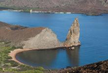 Galápagos: sinta-se um descobridor como Charles Darwin