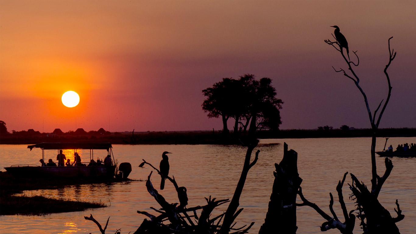 Botswana: safáris para conhecer os paraísos selvagens com muito conforto