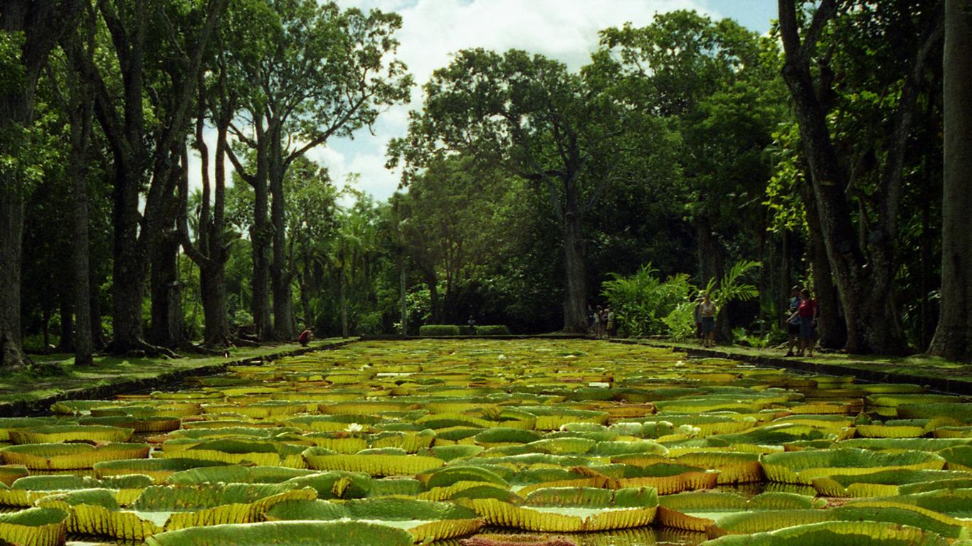Mauritius: muitos motivos para fazer deste seu próximo destino