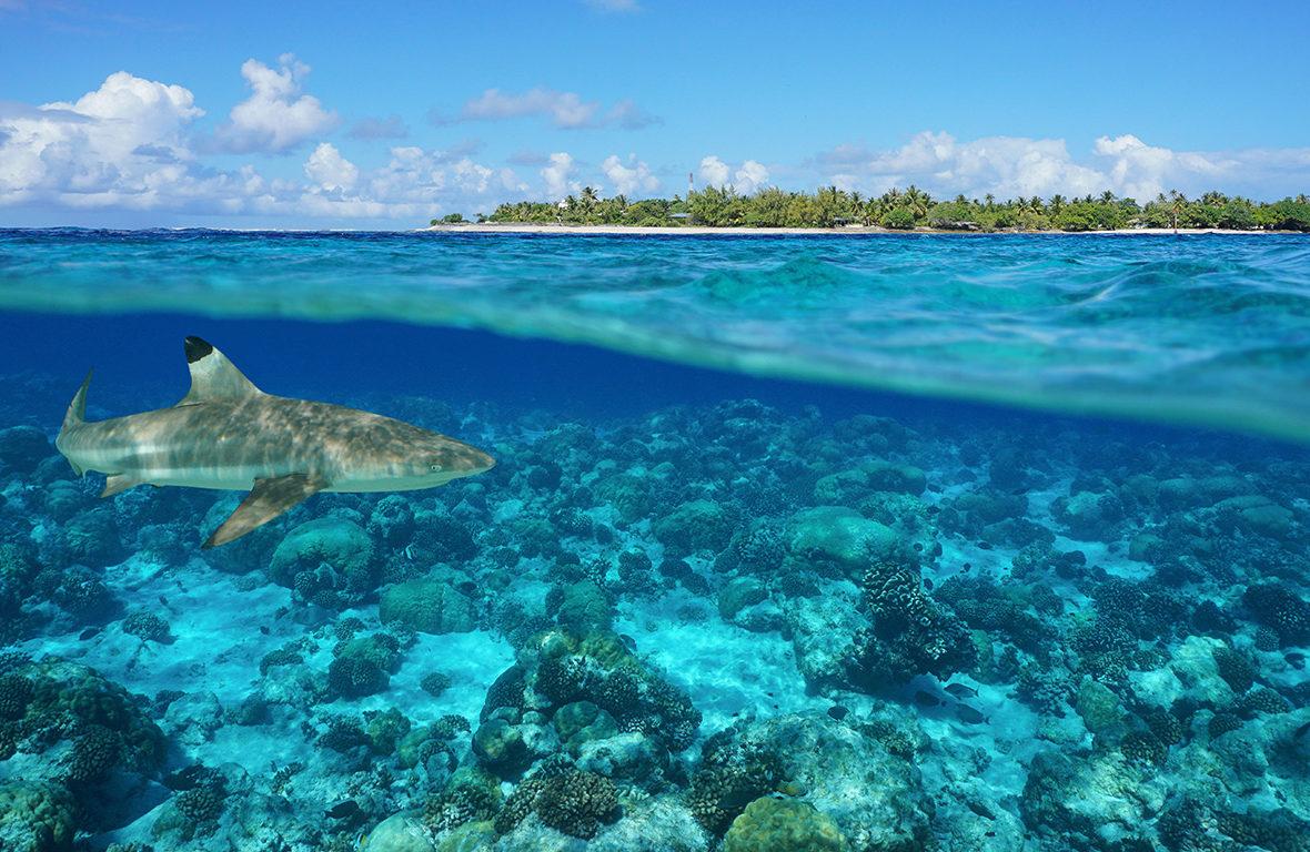 Polinésia Francesa: paraíso onde a natureza criou uma paleta de cores única e exclusiva