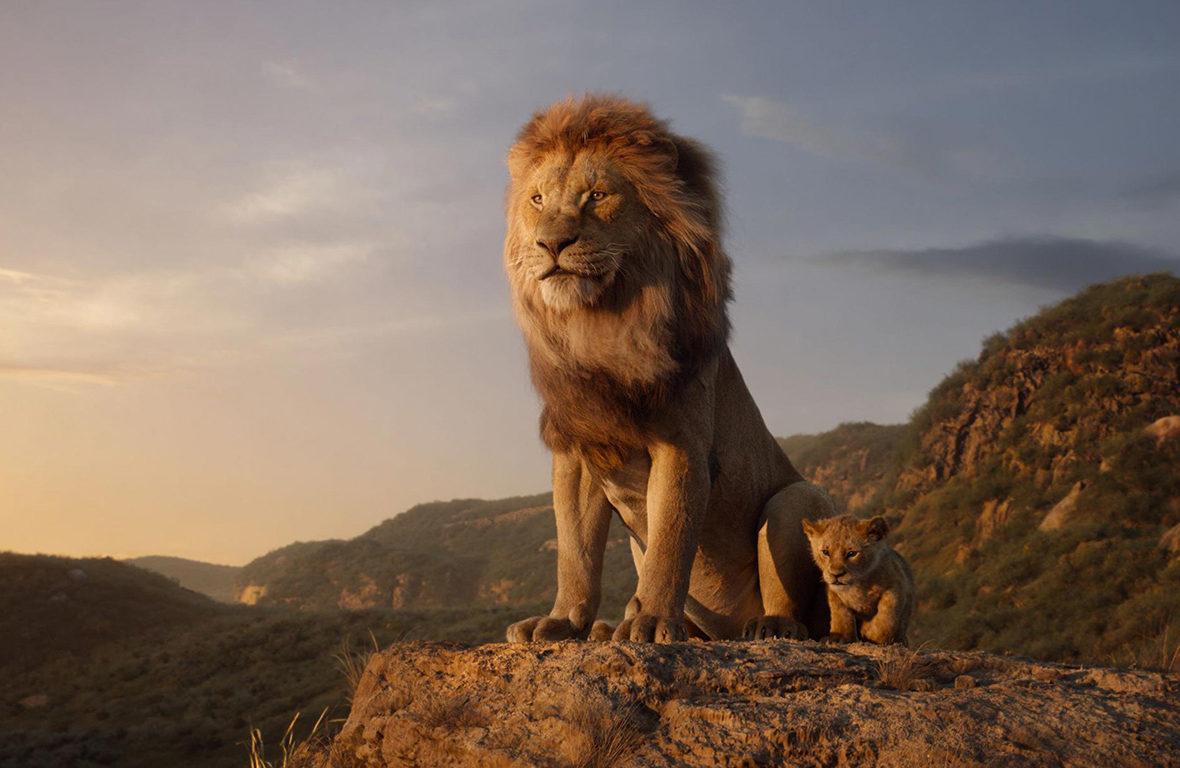 Safári na Tanzânia e no Quênia: entre no clima do Rei Leão