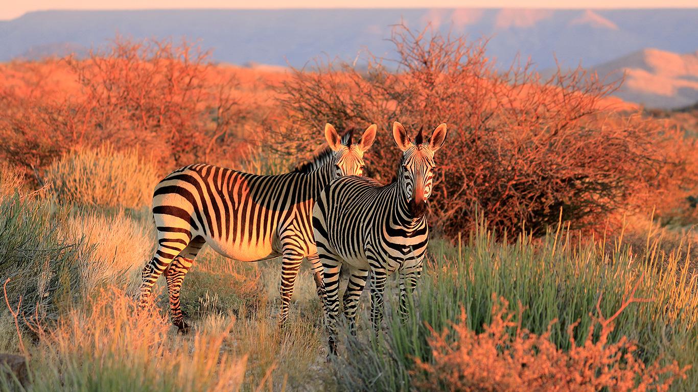Blog Raidho Viagens | Parque Nacional Kruger