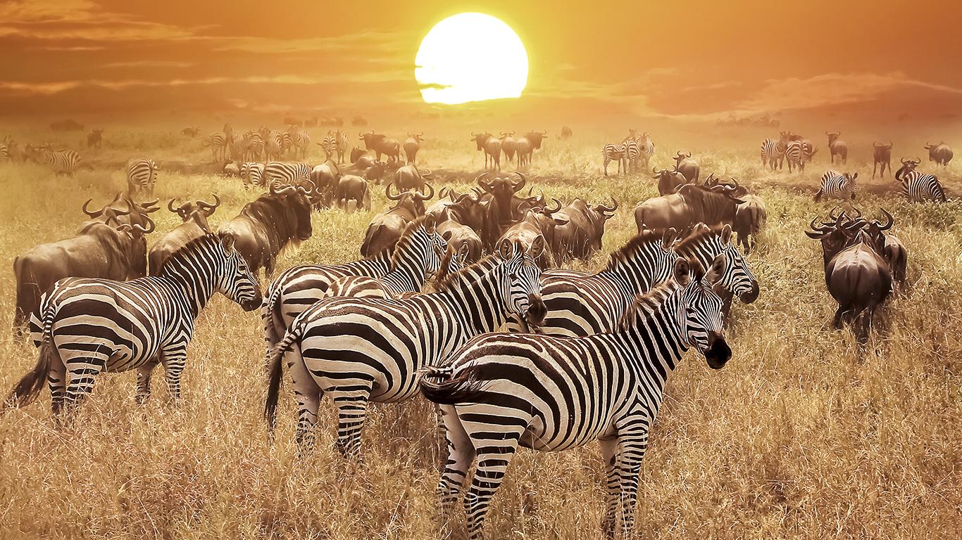 8 motivos para passar as próximas férias na Tanzânia